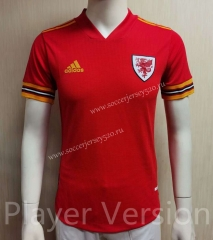 Player Version 2021-2022 Wales Home Red Thailand Soccer Jersey AAA